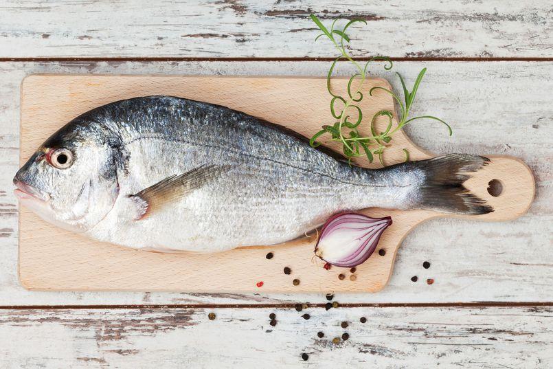 Ryby – najbardziej polecane i odradzane gatunki