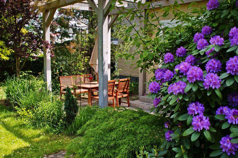 Zakładanie ogrodu w prostych krokach